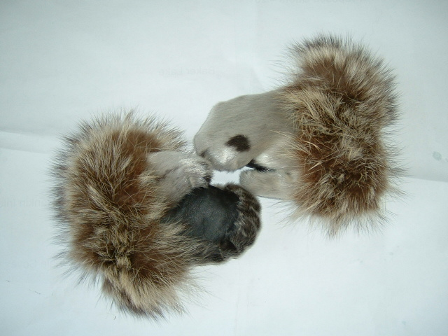 Harp seal mitts